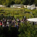 """""""Récits fertiles aux jardins"""""""