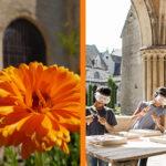 """""""Vos dimanches à Royaumont : musique, danse, patrimoine, jardins, jeune public... (premier semestre 2019)"""""""
